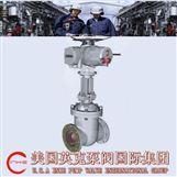 進口電動閘閥的工作原理及使用方法