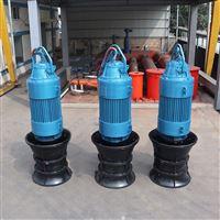QZ/H(QZB)耐锈蚀轴流泵
